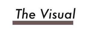 thevisual